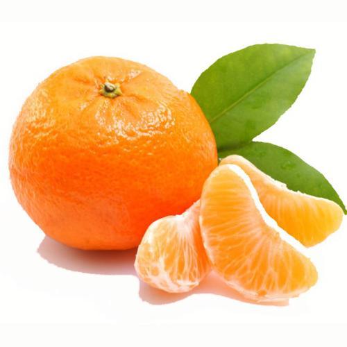 柑橘树叶发黄的主要原因是什么?到底怎么样解决?