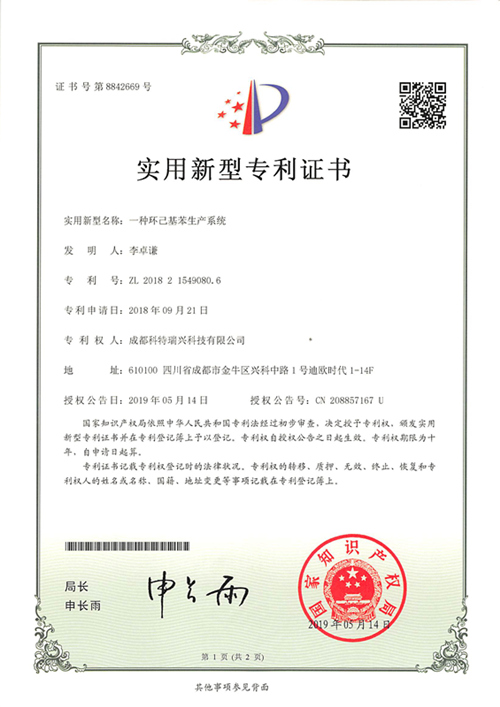 一种环己基苯生产系统证书