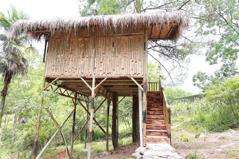 带你了解低耗能的竹木建筑