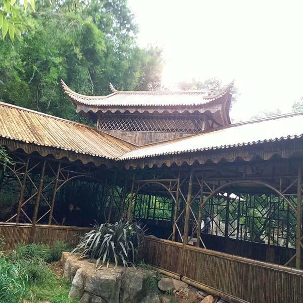 成都竹木建筑客户见证