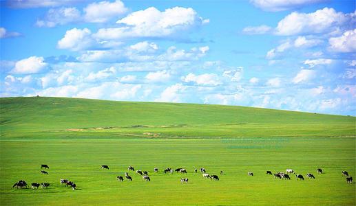 文明健康在草原根据地扎根