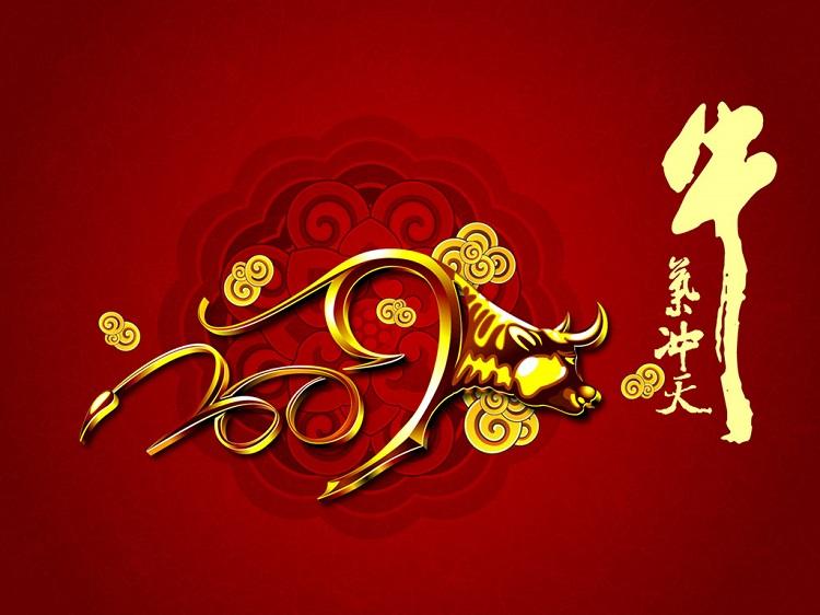 贺欣建材有限公司,祝大家春节快乐!