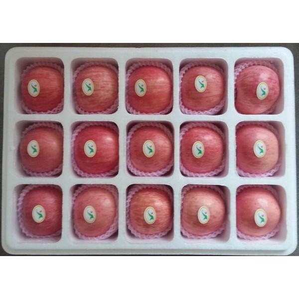 西安泡沫包装箱生产
