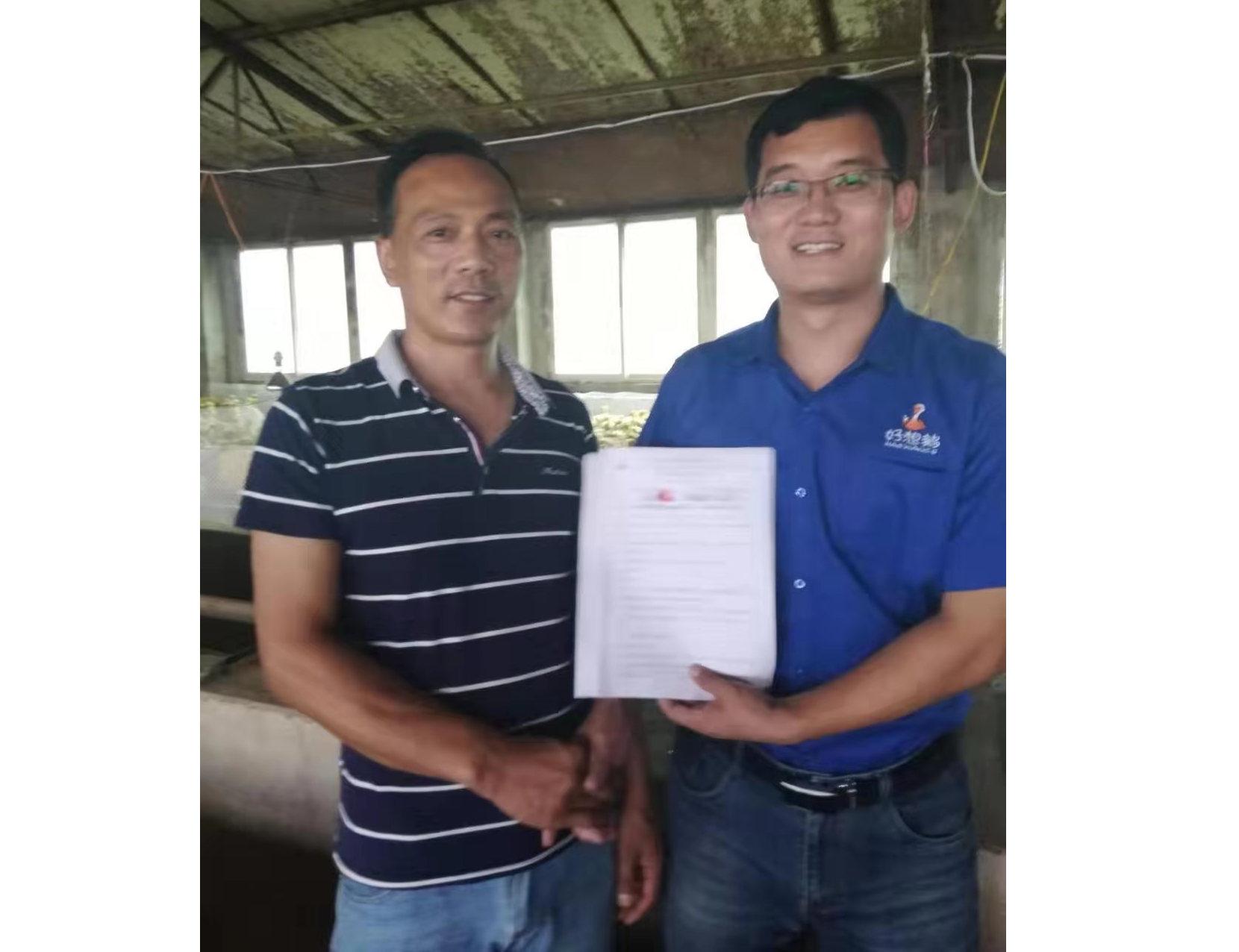 河南鹅苗孵化养殖厂家合作案例