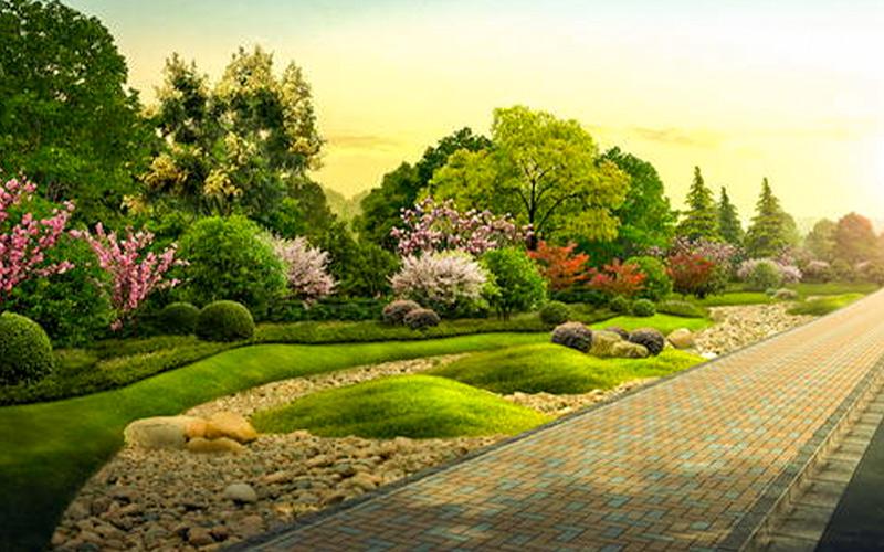 植物配置在园林景观中方法与步骤