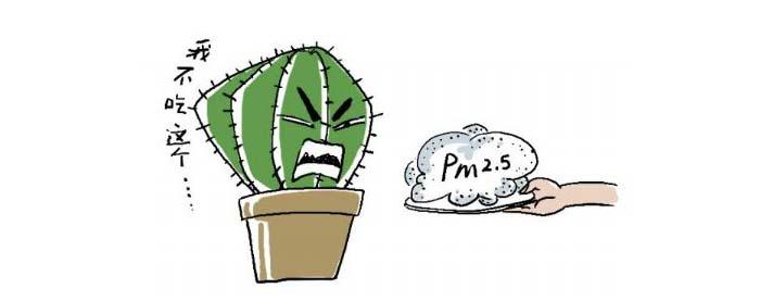 眉山甲醛检测公司告诉你养植物去除排PM2.5并不是一定的