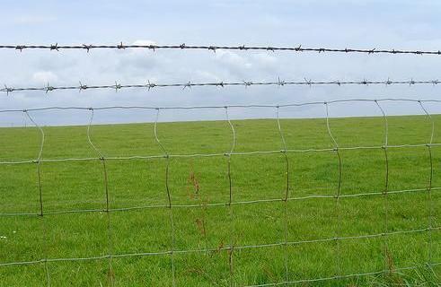 成都草原围栏网
