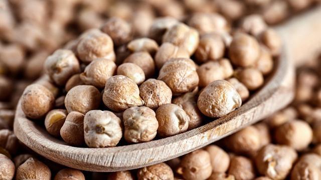 深藏在豆类中的**鹰嘴豆,资历.老,但它在中国却比不过黄豆