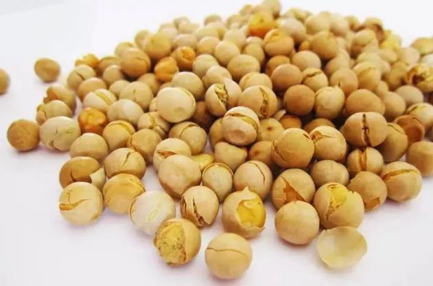 关于鹰嘴豆的一切,你了解多少呢?