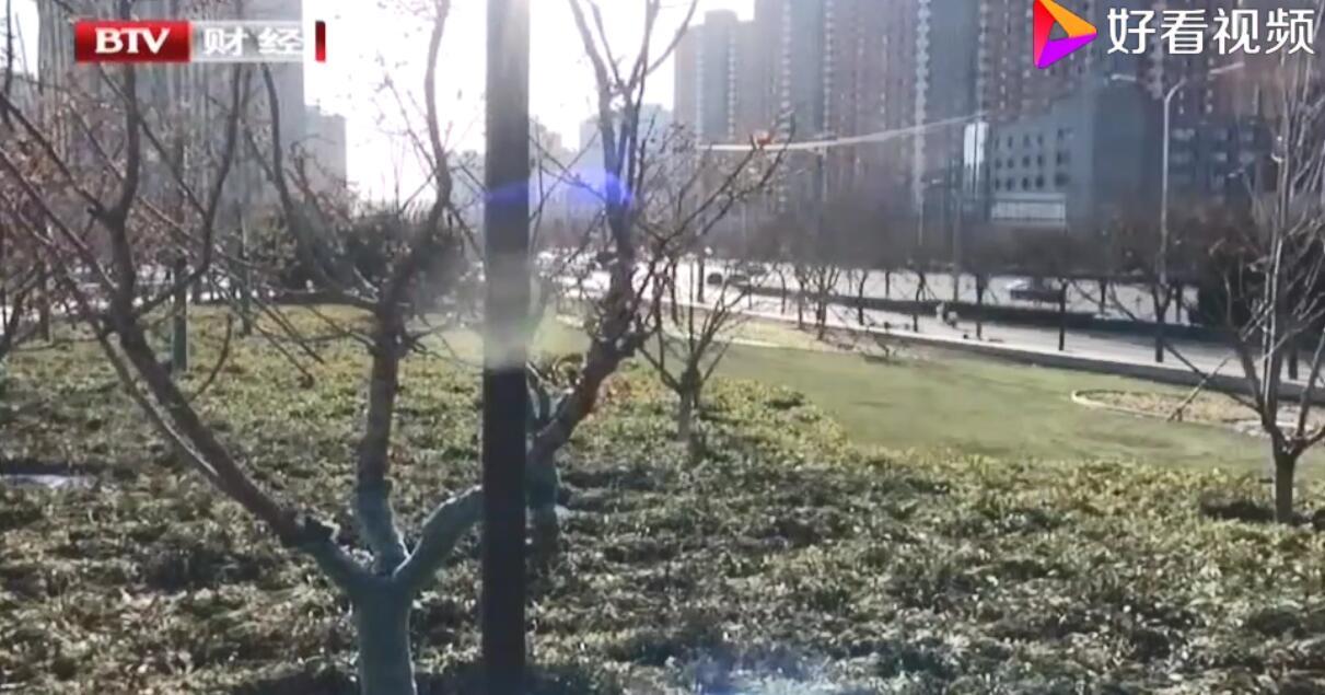 北京拆违腾退地上建起休闲公园、小微绿地