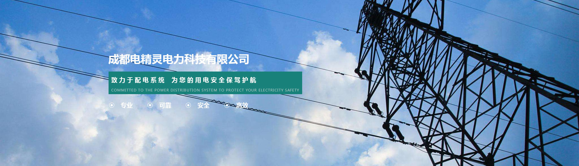 Sichuan Electric Power annual inspection pre test