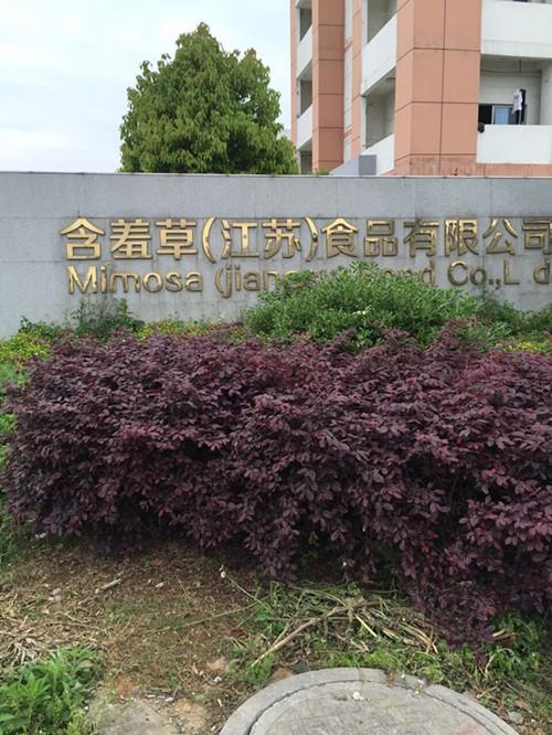 南京含羞草食品公司