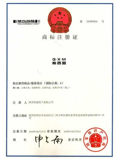 商标注册6类(2)