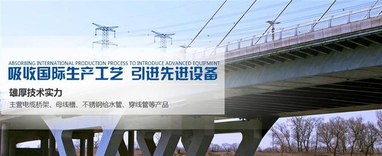 西安喷塑电缆桥架