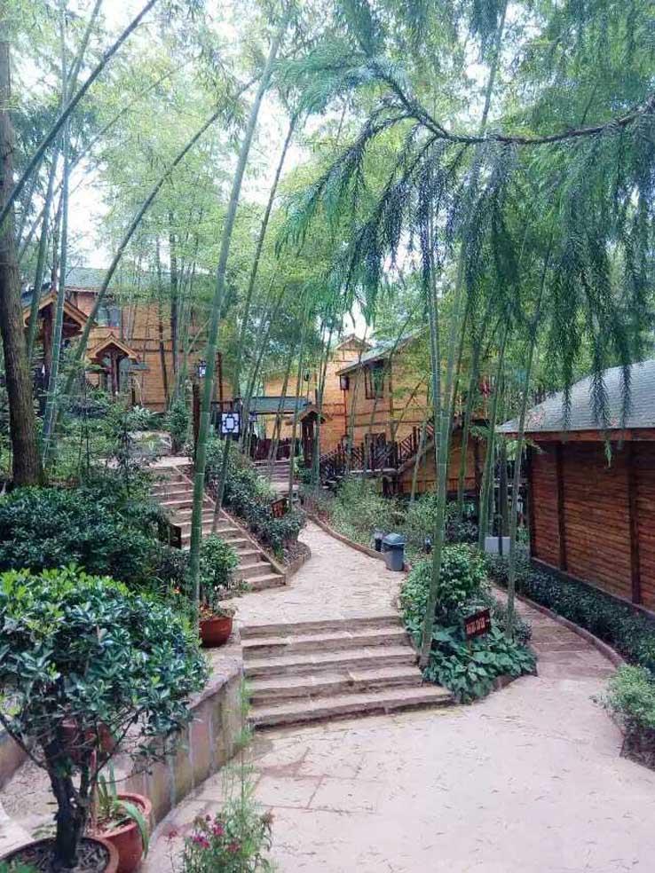 四川传统木结构施工