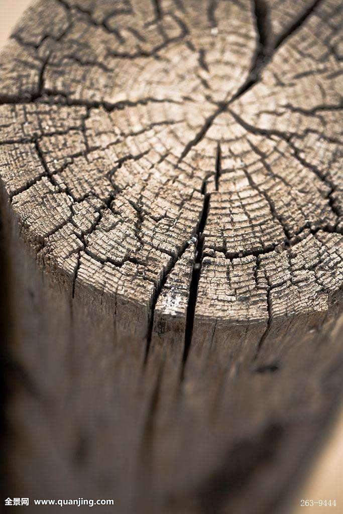 关于木屋———木头开裂问题