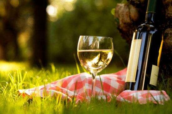 干白葡萄酒是用白葡萄酿造的吗?