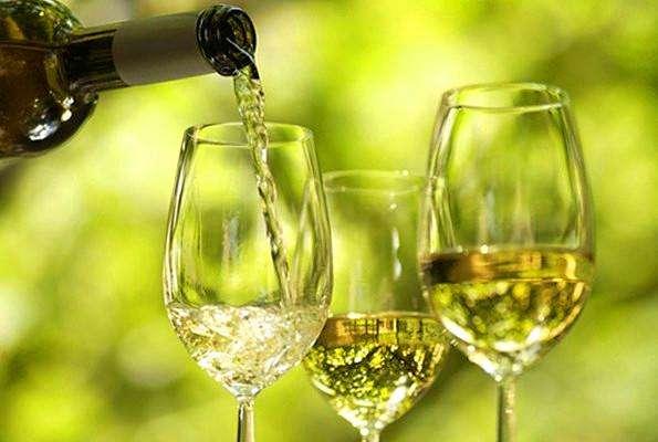 干白葡萄酒知识普及及风格品鉴