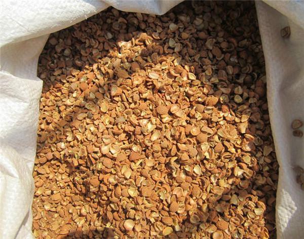 果壳滤料与椰壳活性炭的区别都体现在什么地方