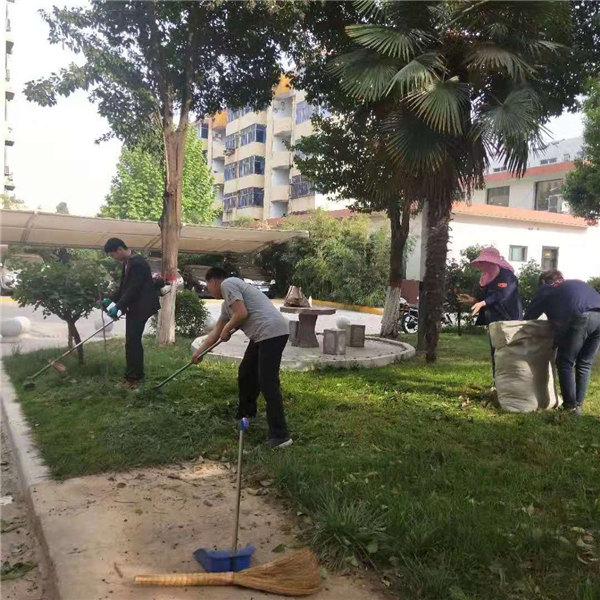包联单位韩城市人大修剪草坪