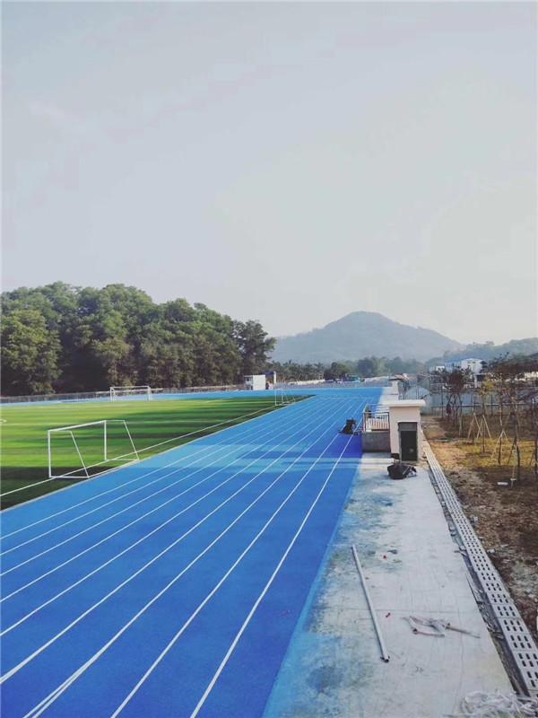 广东外语外贸大学增城实验学校塑胶跑道