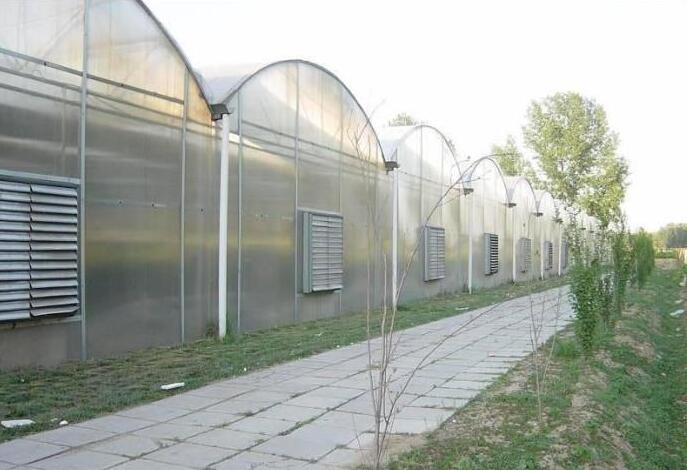 PC陽光板溫室