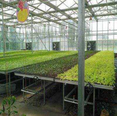 观光农业温室