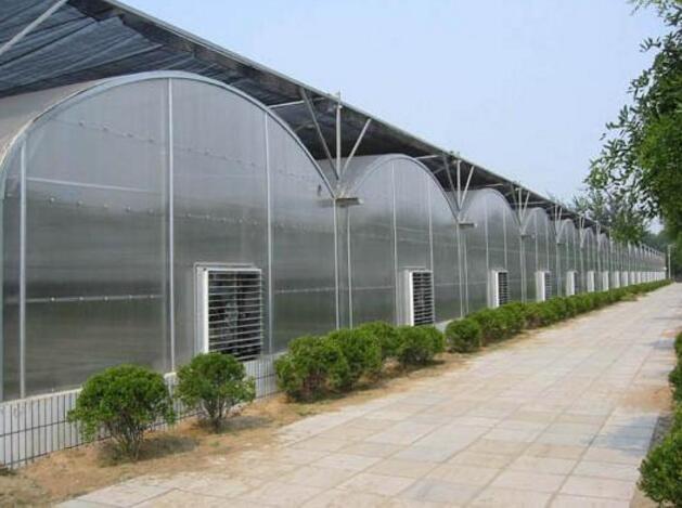 河南PC阳光板温室