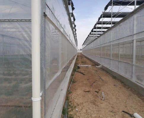 河南温室大棚薄膜温室