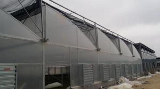 越來越多的農作物培育基地溫室大棚是因為什么吸引了這么多人的來使用的呢?