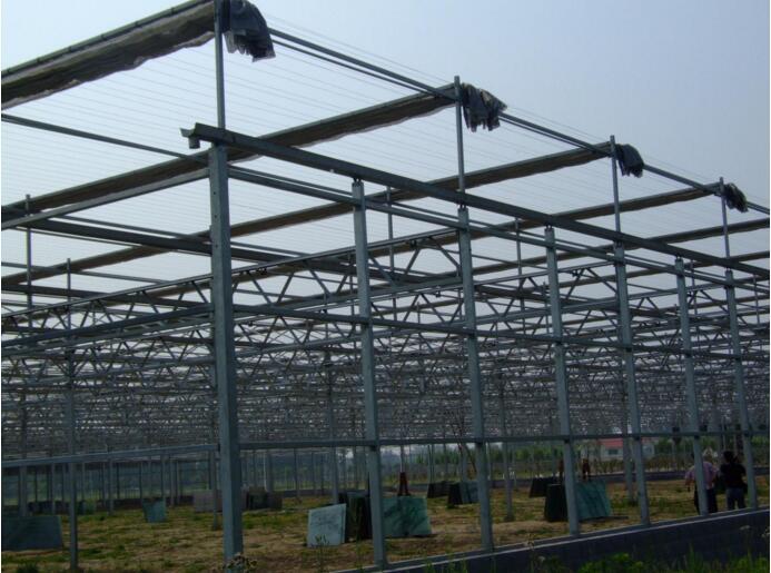 河南智能温室与河南省农科院合作工程案例