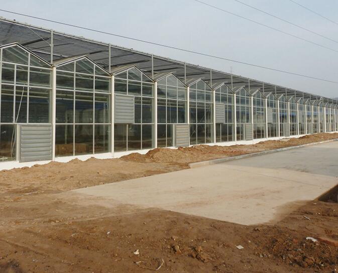 河南玻璃温室厂家