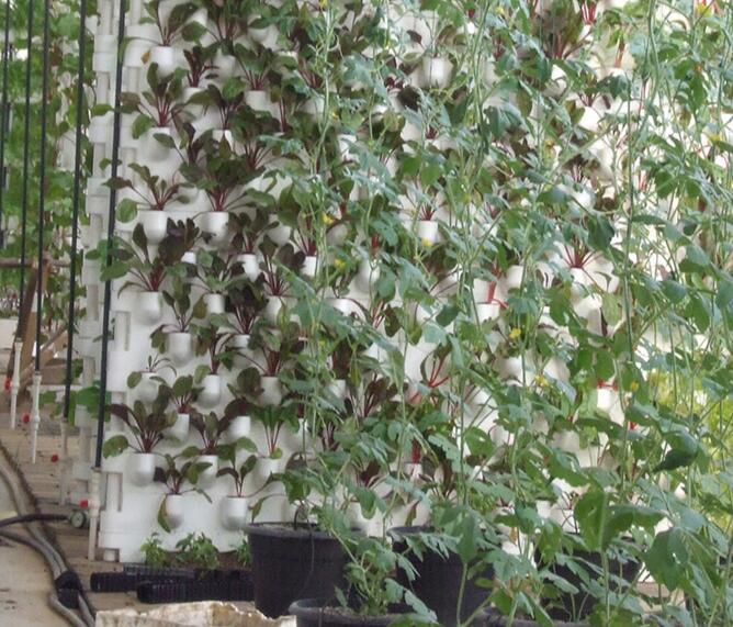 河南玻璃温室观光农业温室
