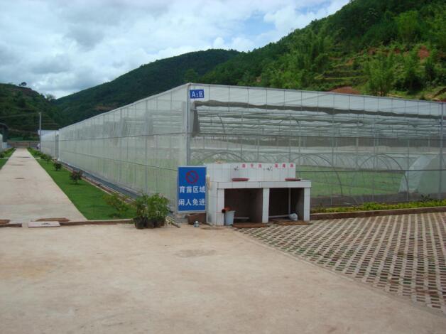 河南育苗工厂