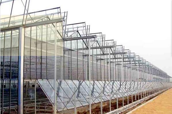 河南玻璃温室定制