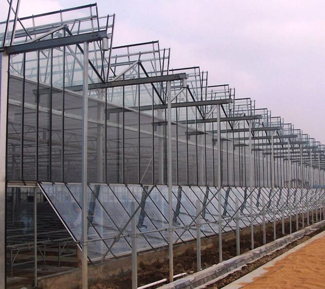 如何提高温室大棚的采光率,有哪些方法可以有效解决?一文便知!