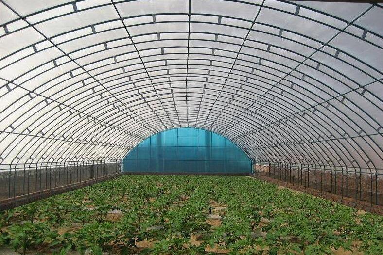 10大方法能有效解决提供温室大棚的采光率!