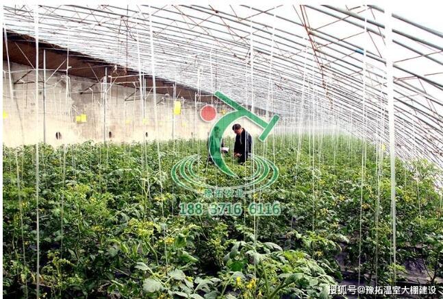 郑州温室公司