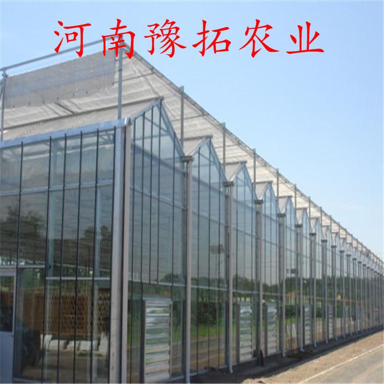 河南温室大棚—连栋温室