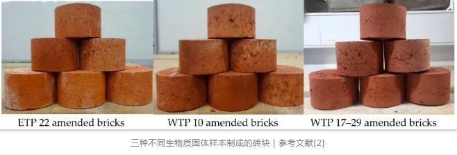 三种不同生物质固体样本制成的砖块