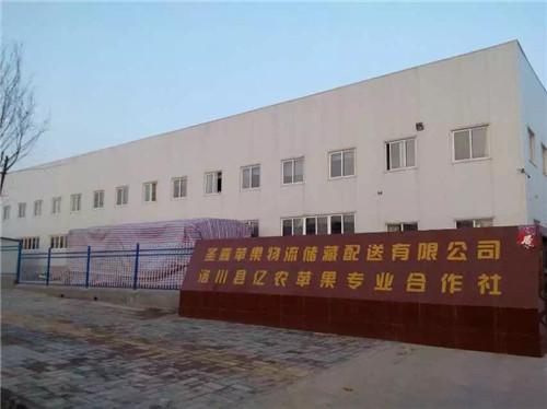 洛川县圣嘉果业5000吨苹果保鲜库