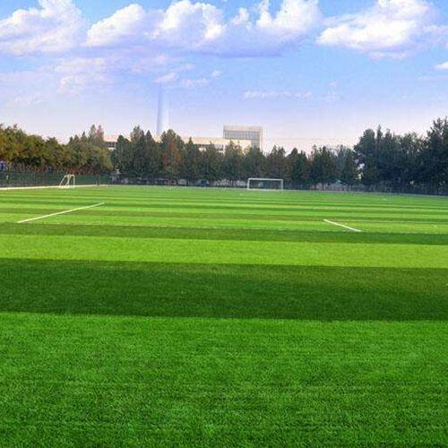 成都足球场