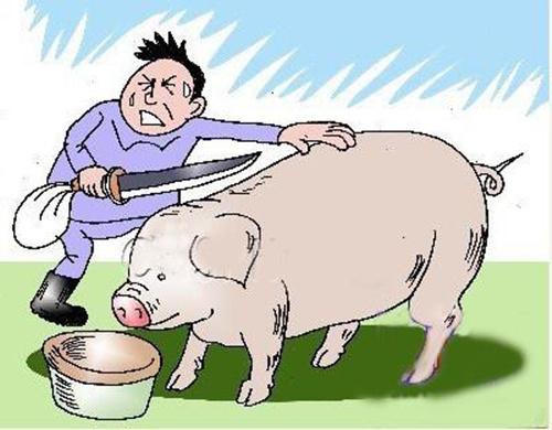 想開一家小型生豬屠宰場條件是什么呢?布局有什么要求嗎?