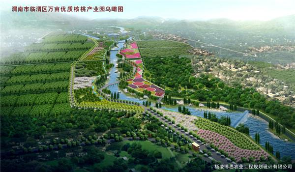 渭南市临潼区万亩核桃产业园鸟瞰图