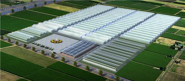 甘谷县蔬菜示范园鸟瞰图