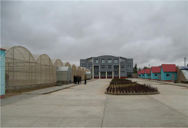 宁夏回族自治区马铃薯良种繁育项目