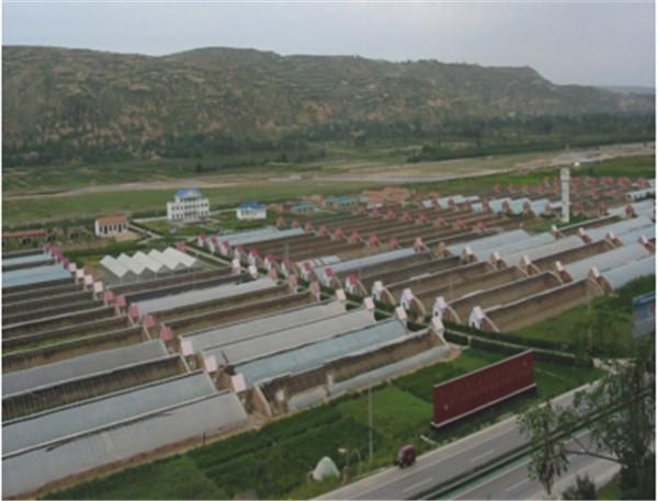 泾川高新农业示范园