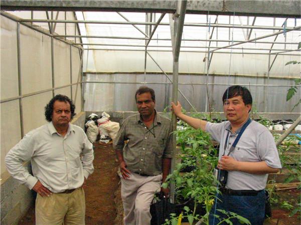 考察毛里求斯国内已建成的法国、韩国、以色列、南非、荷兰等国模式的温室。