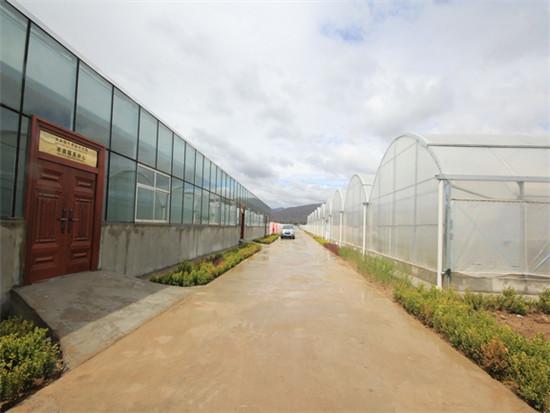 2013年建成的甘肃省甘谷县现代农业示范园1
