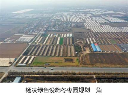 杨凌绿色设施枣园规划一角